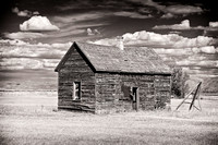 Vestiges of the Past - Bear Lake